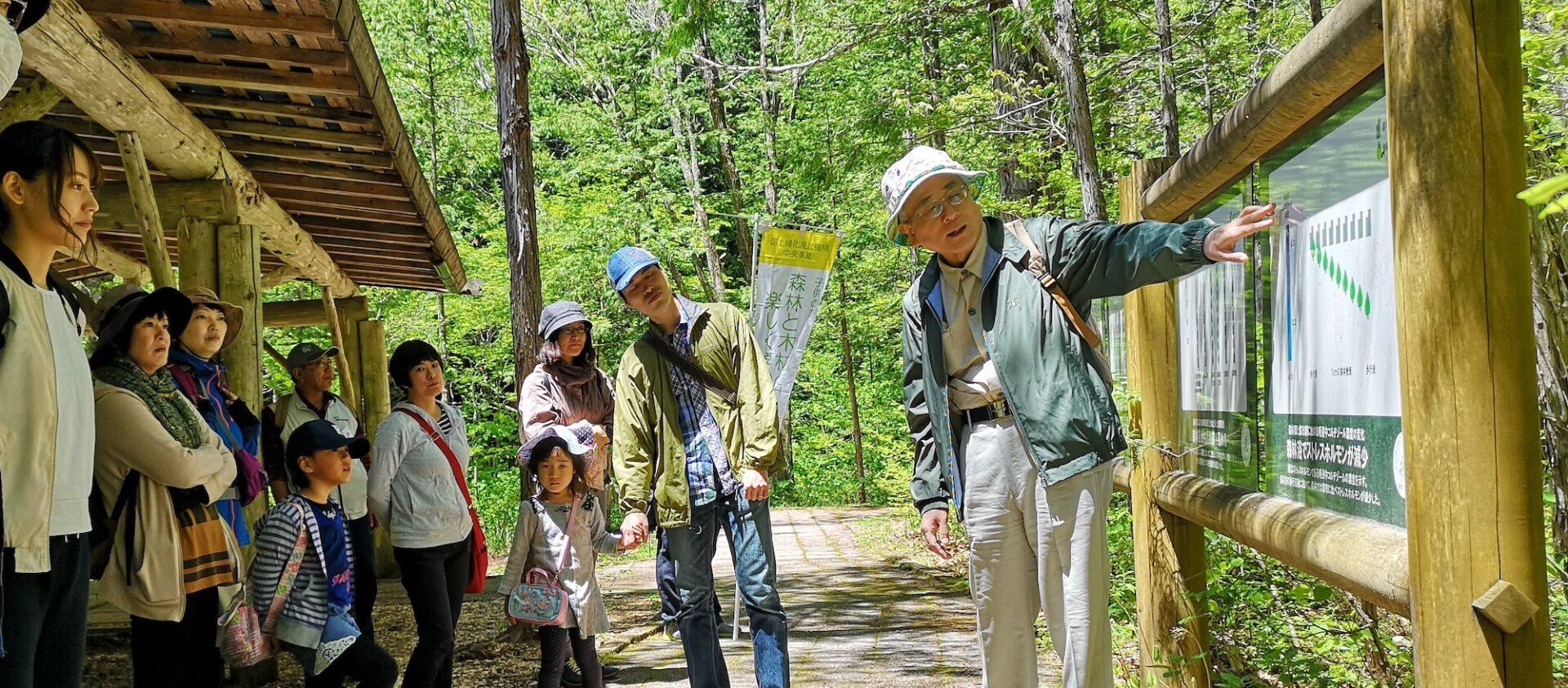 赤沢自然休養林の森林浴